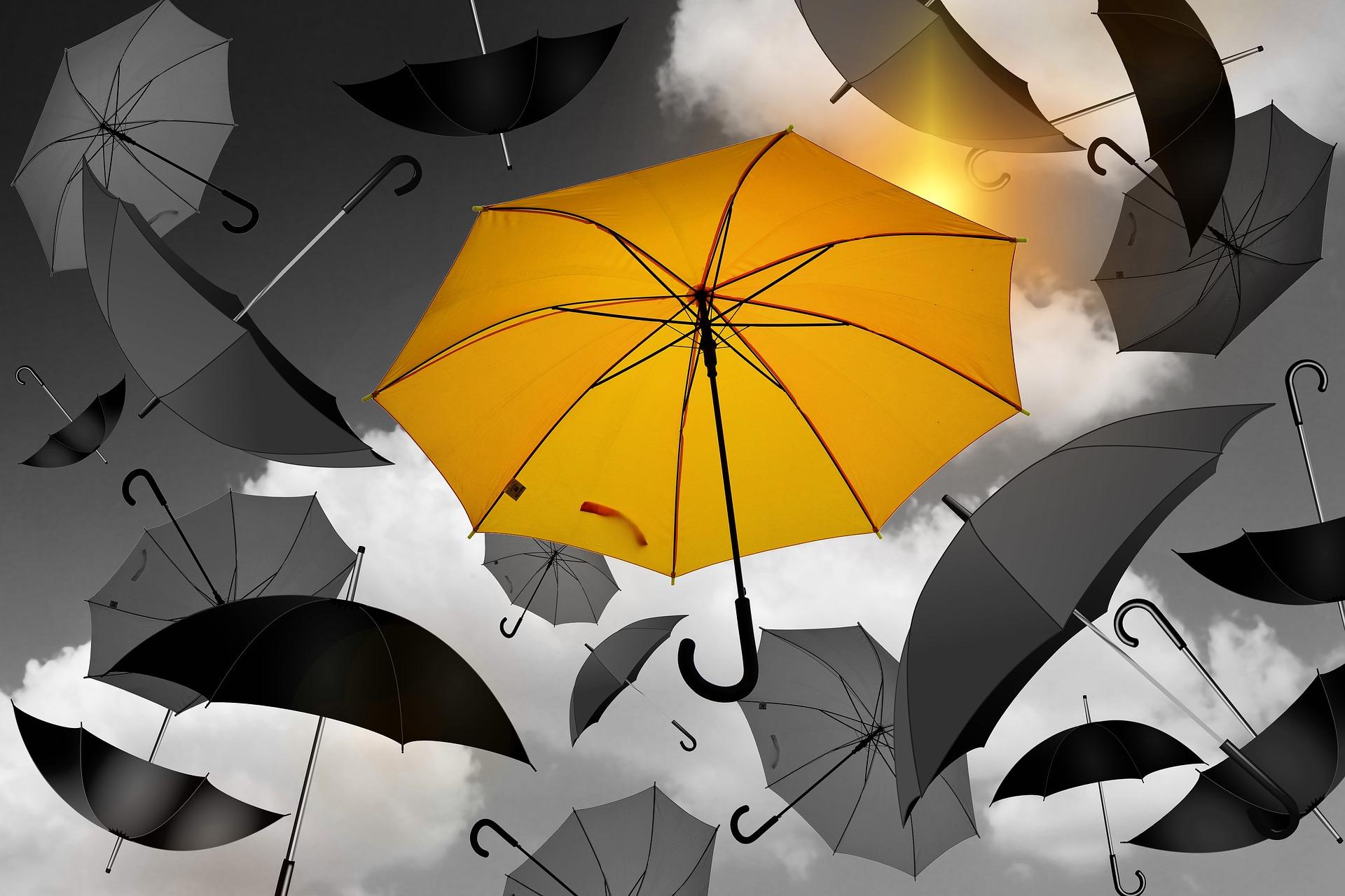 Freiwilligenmanagement: Schirm
